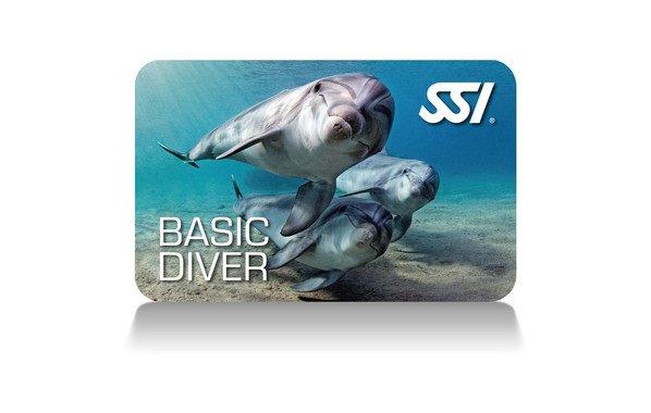 Basic Diver