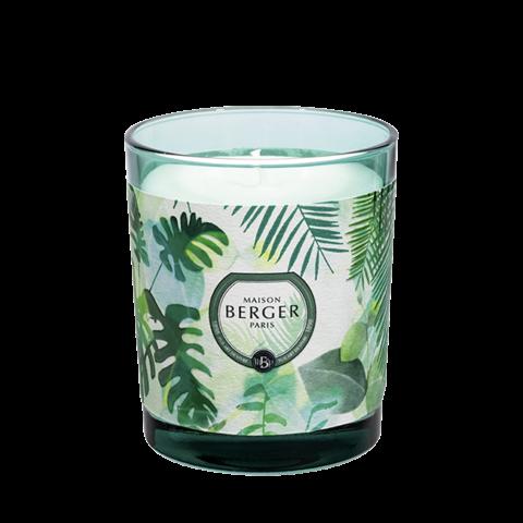 Immersion Candle - Fresh Eucalyptus