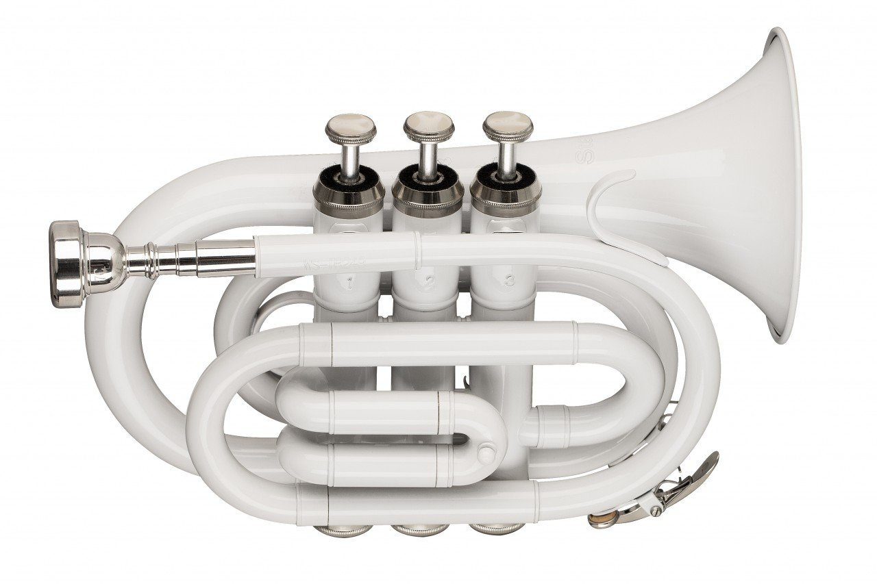 STAGG WS-TR249S Bb POCKET TRUMPET, ML-BORE, BRASS BODY, WHITE