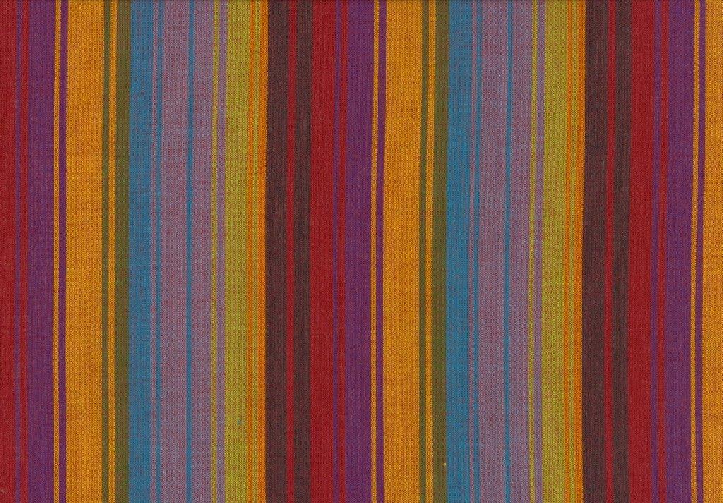 Exotic Stripe - Purple