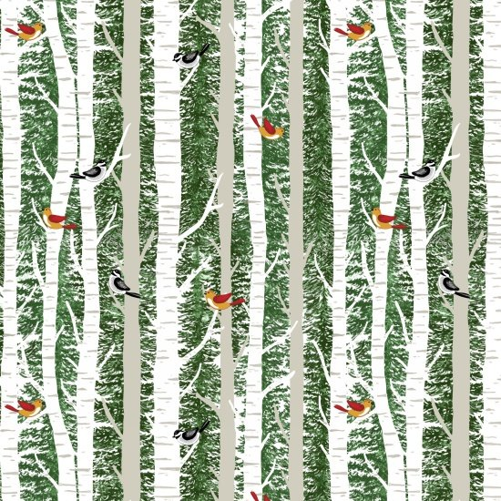 Birch and Birds, A Time of Wonder