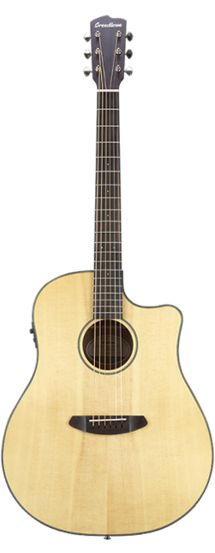 Breedlove Discovery Dreadnaught CE
