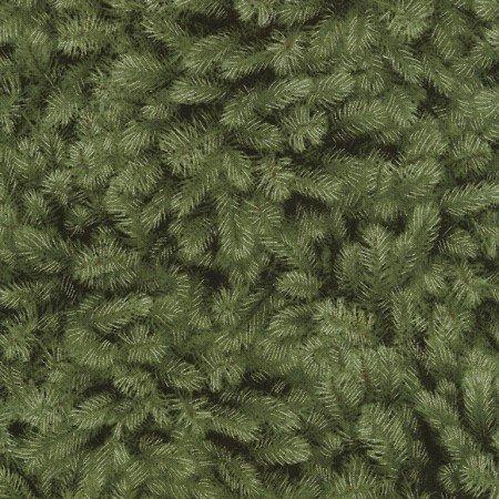 3-Holiday Cream Green