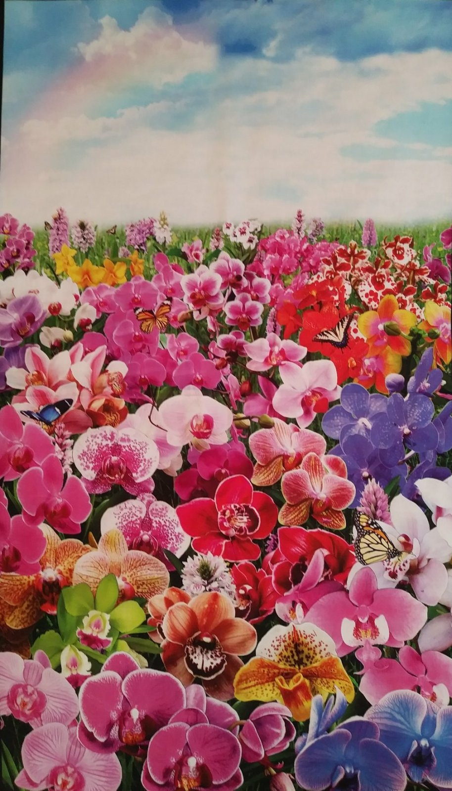 Digital Gardens Orchids Panel