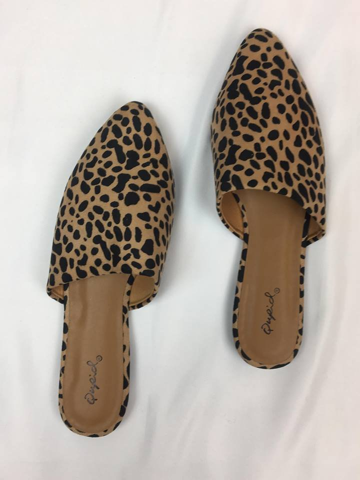 Cheetah Mule