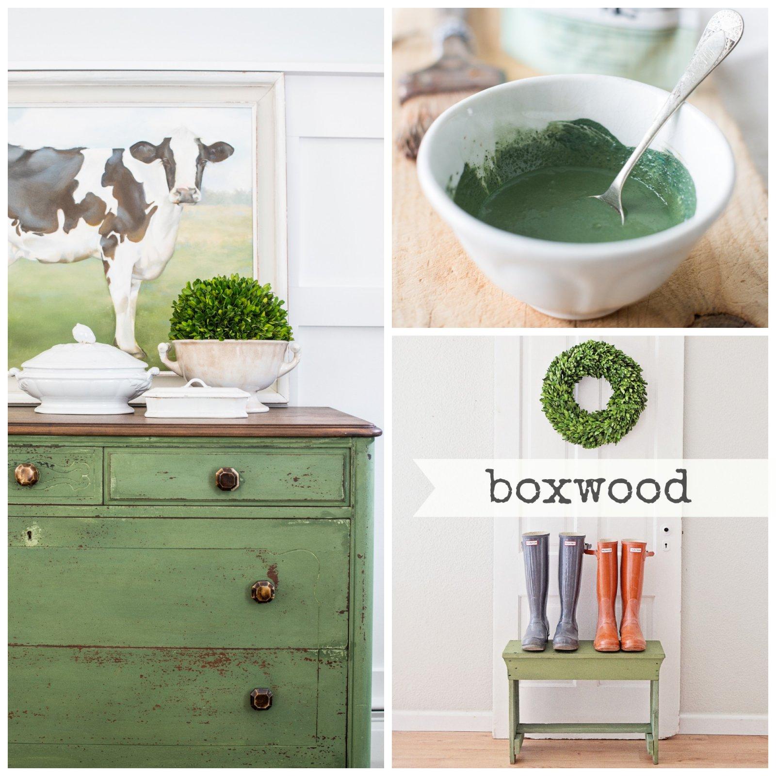 Boxwood Milk Paint 1 Qt