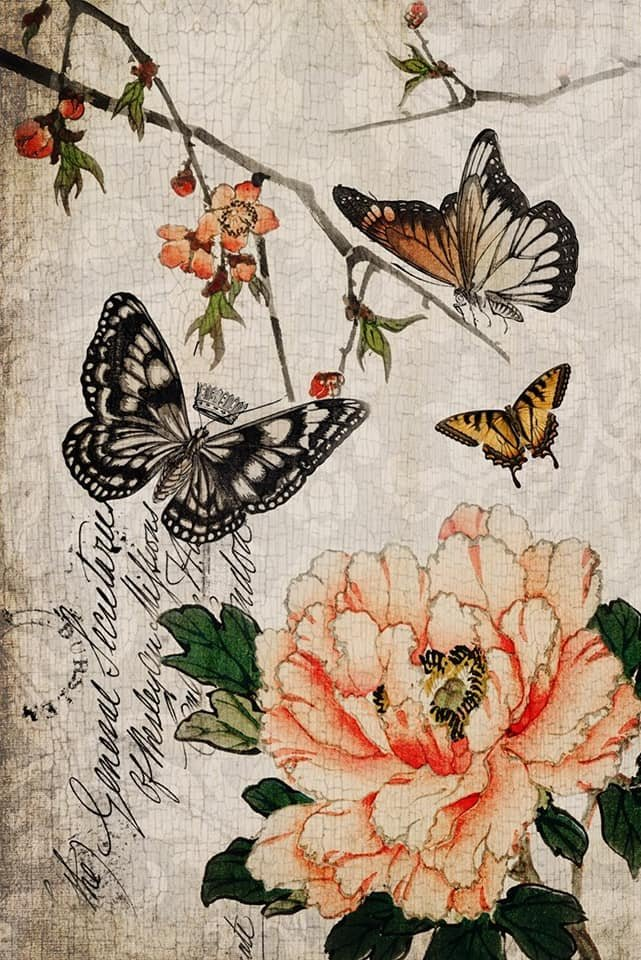 Butterfly Floral 20x30 Roycycled Decoupage Paper