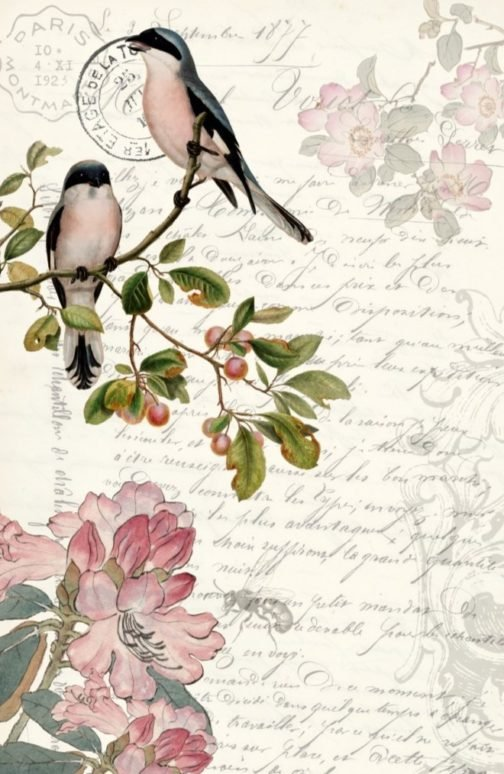 Spring Bird 20x30 Roycycled Decoupage Paper