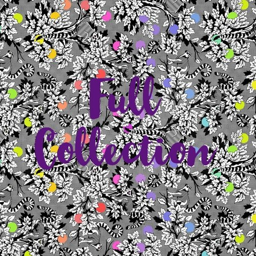 Linework by Tula Pink 42 PC  5 Charm Pack
