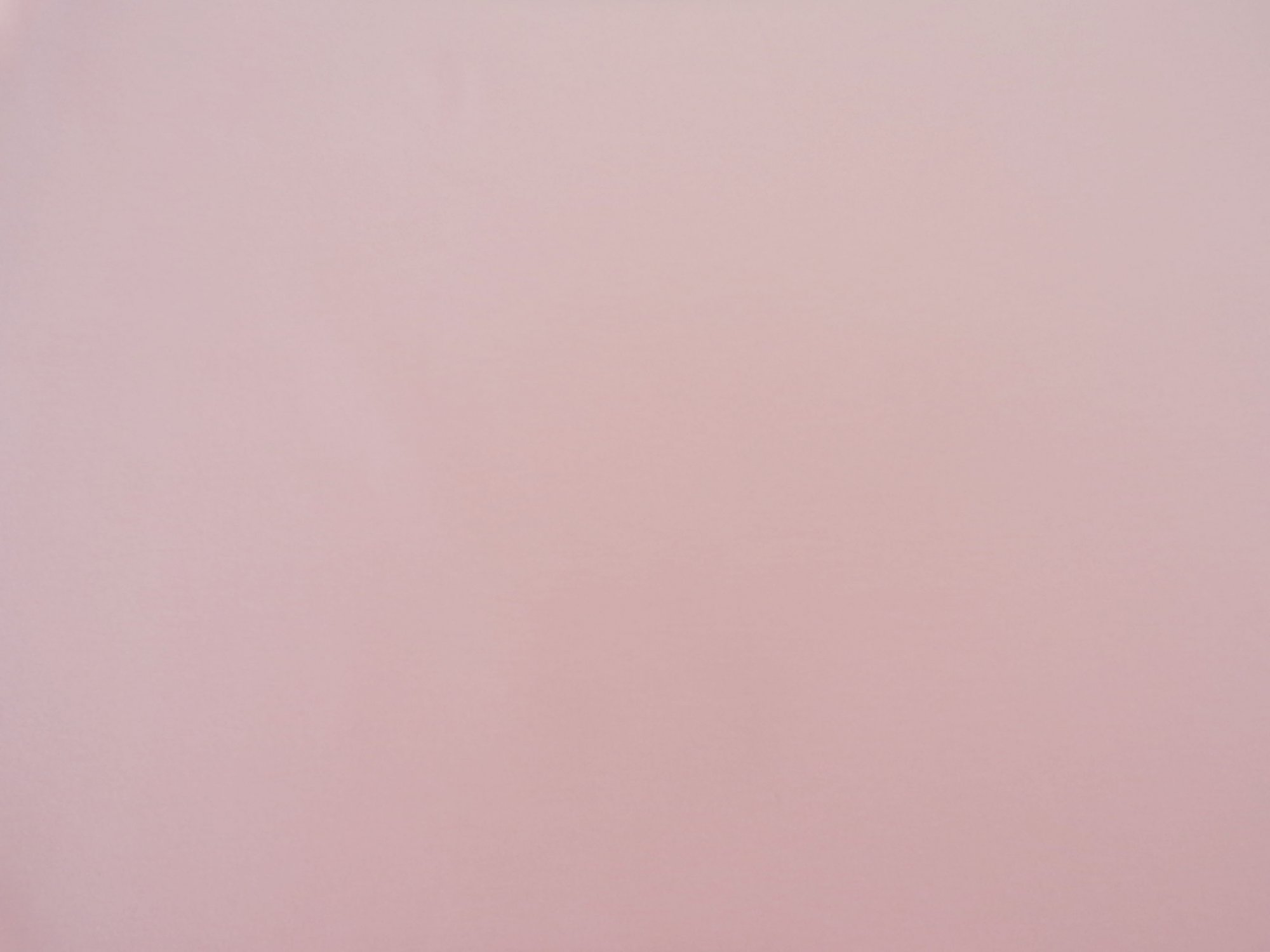 Cotton Lycra Jersey - Peach