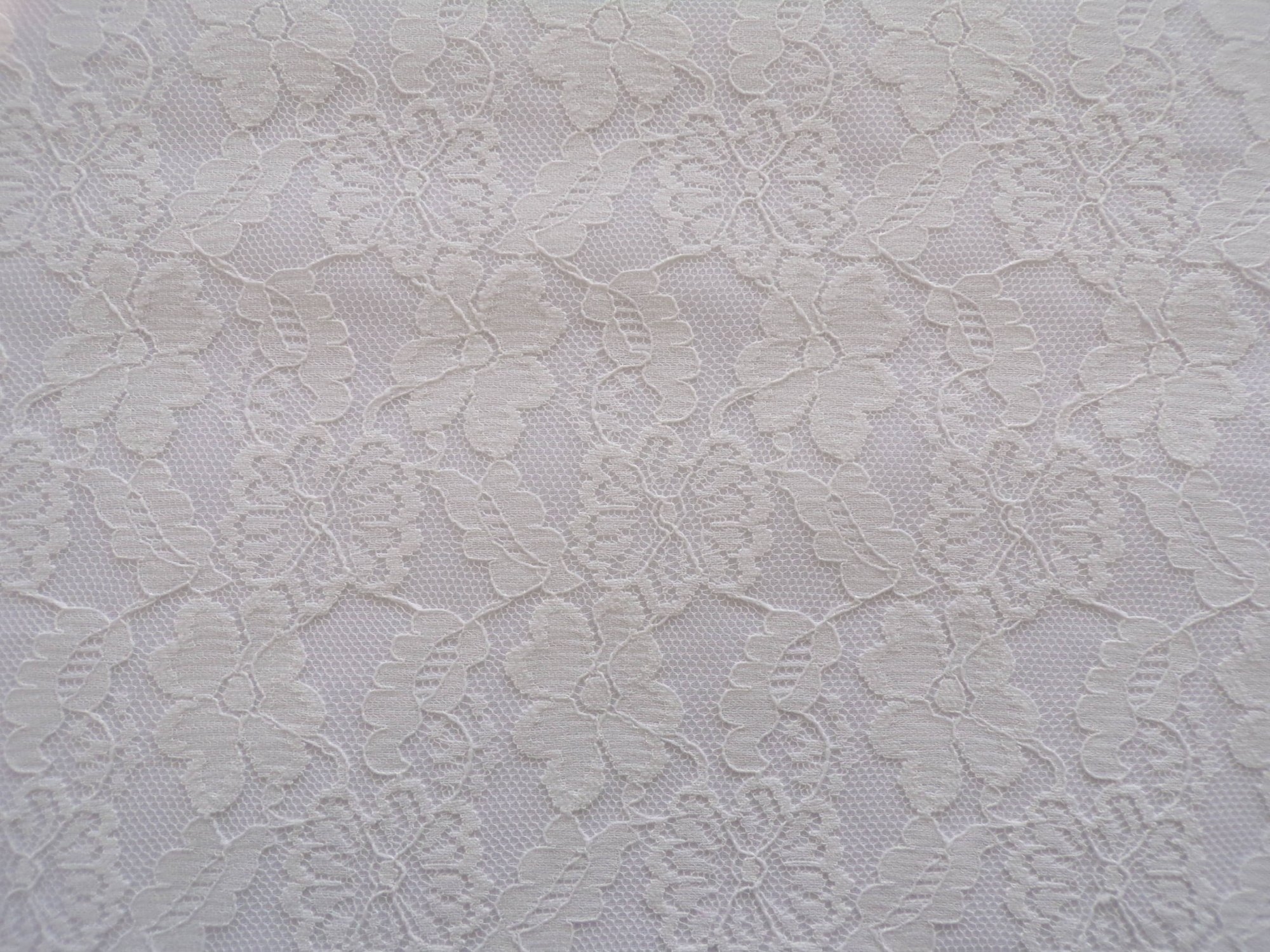 Marquette Lace - Ivory