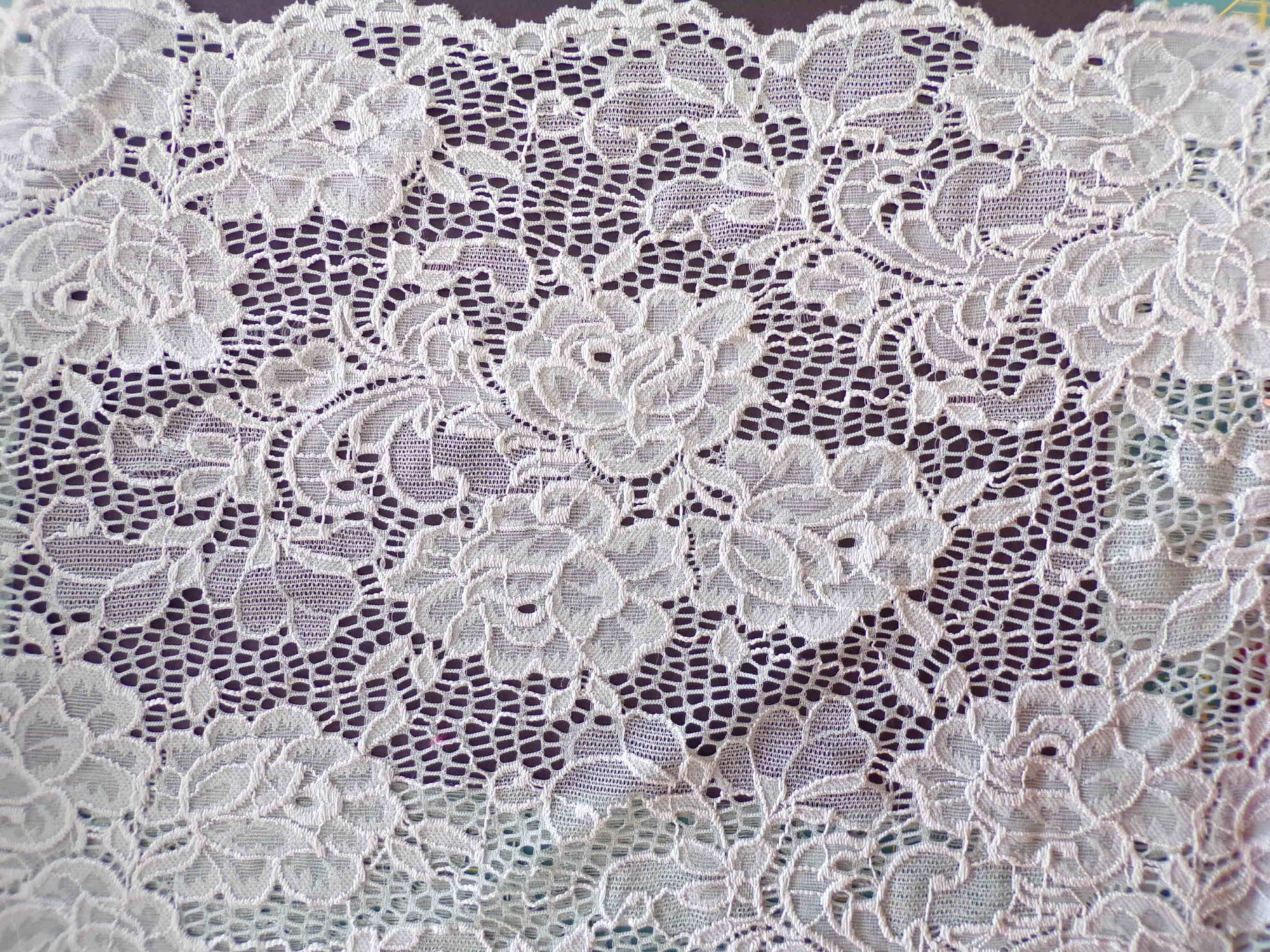 Scalloped Stretch Lace - Sage Green
