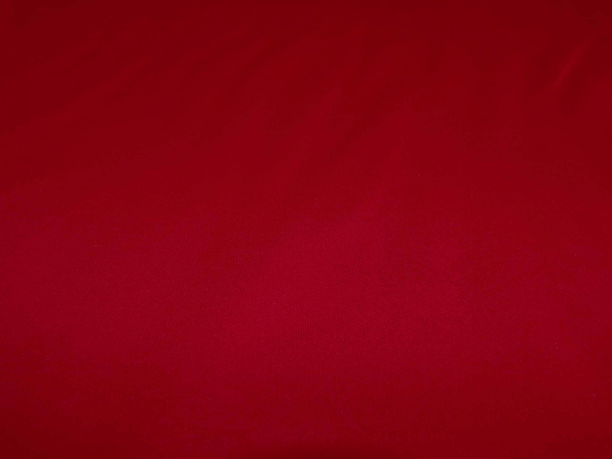 Red Sweatshirt Fleece