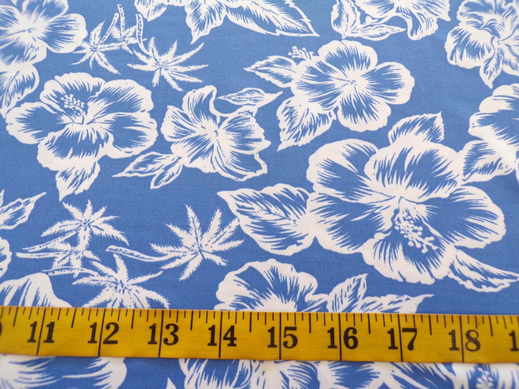 Swimwear - Blue and White Floral