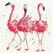Pink Ladies by Hannah Dale