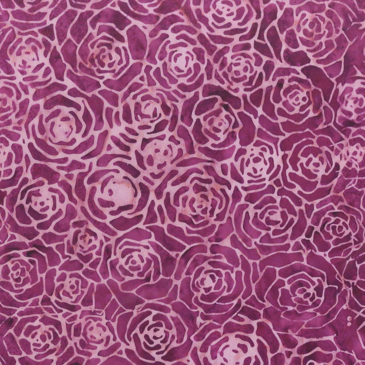 Roses,Purple