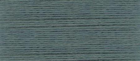EN17 Ellana Blue Spruce