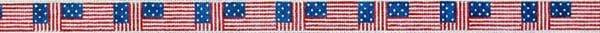 American Flag Belt 318A