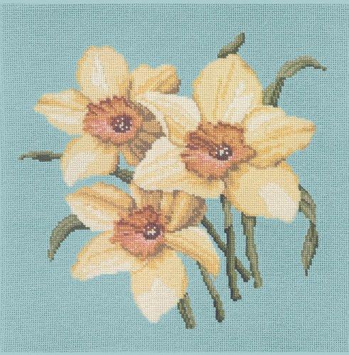 Daffodil Blossom - Duck Egg Blue Background Needlepoint Kit