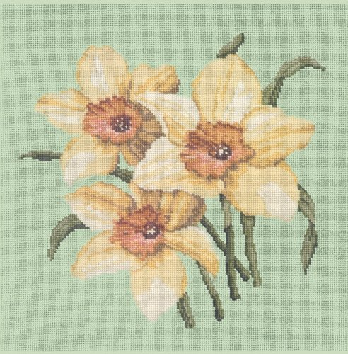 Daffodil Blossom - Pale Green Background Needlepoint Kit