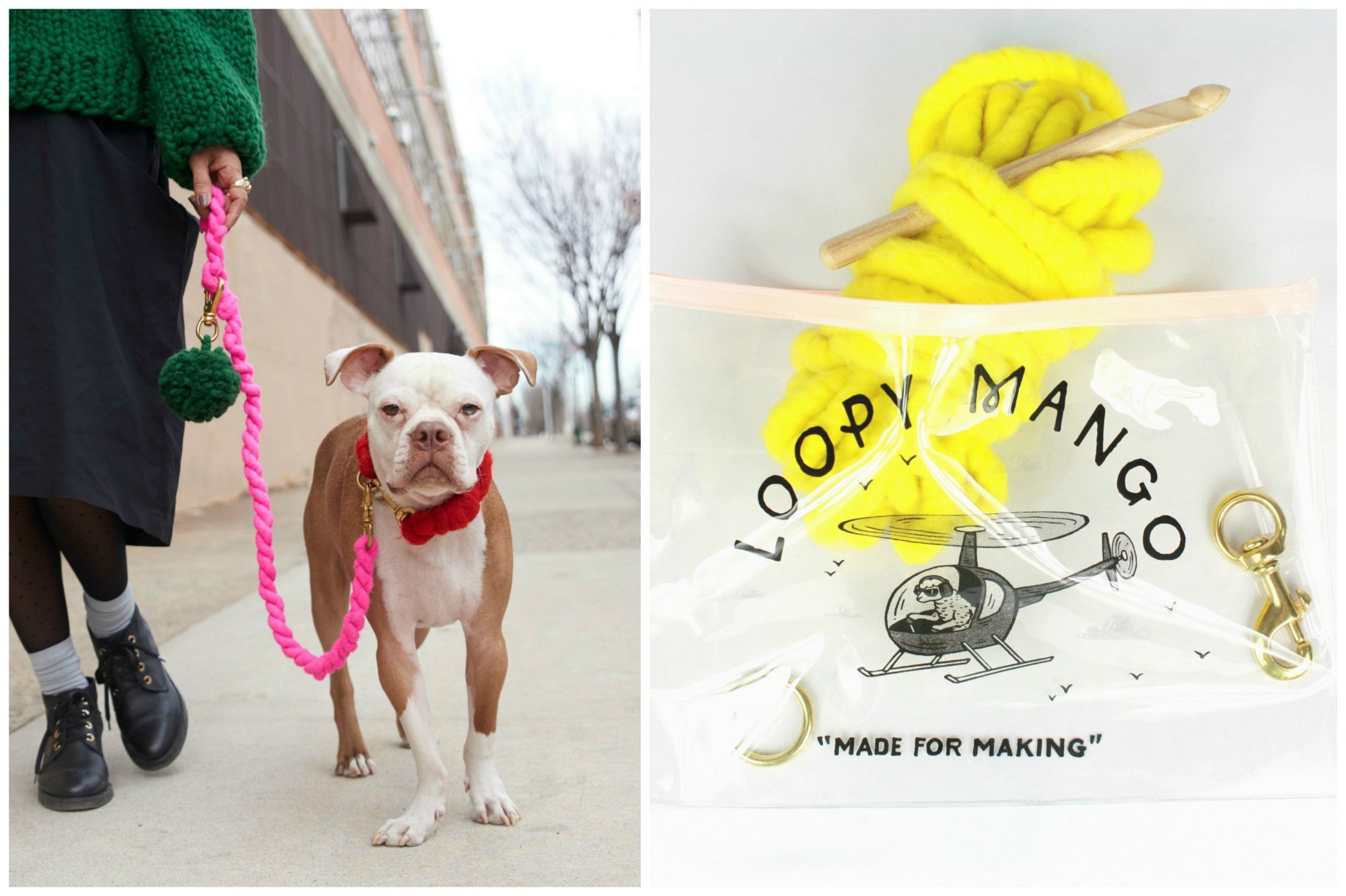 DIY Dog Leash Kit
