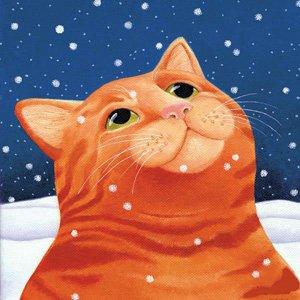 Ginger Snow VM1711
