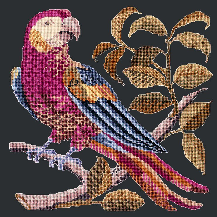Pete the Parrot Needlepoint Kit