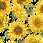 Sunflower Garden P Sunflowers 1378-94