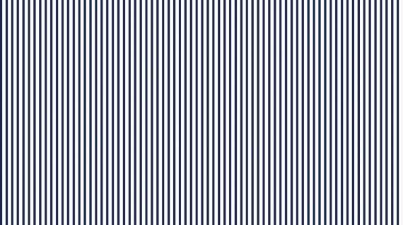 I Don't Give A Ship - Dress Stripe - Navy