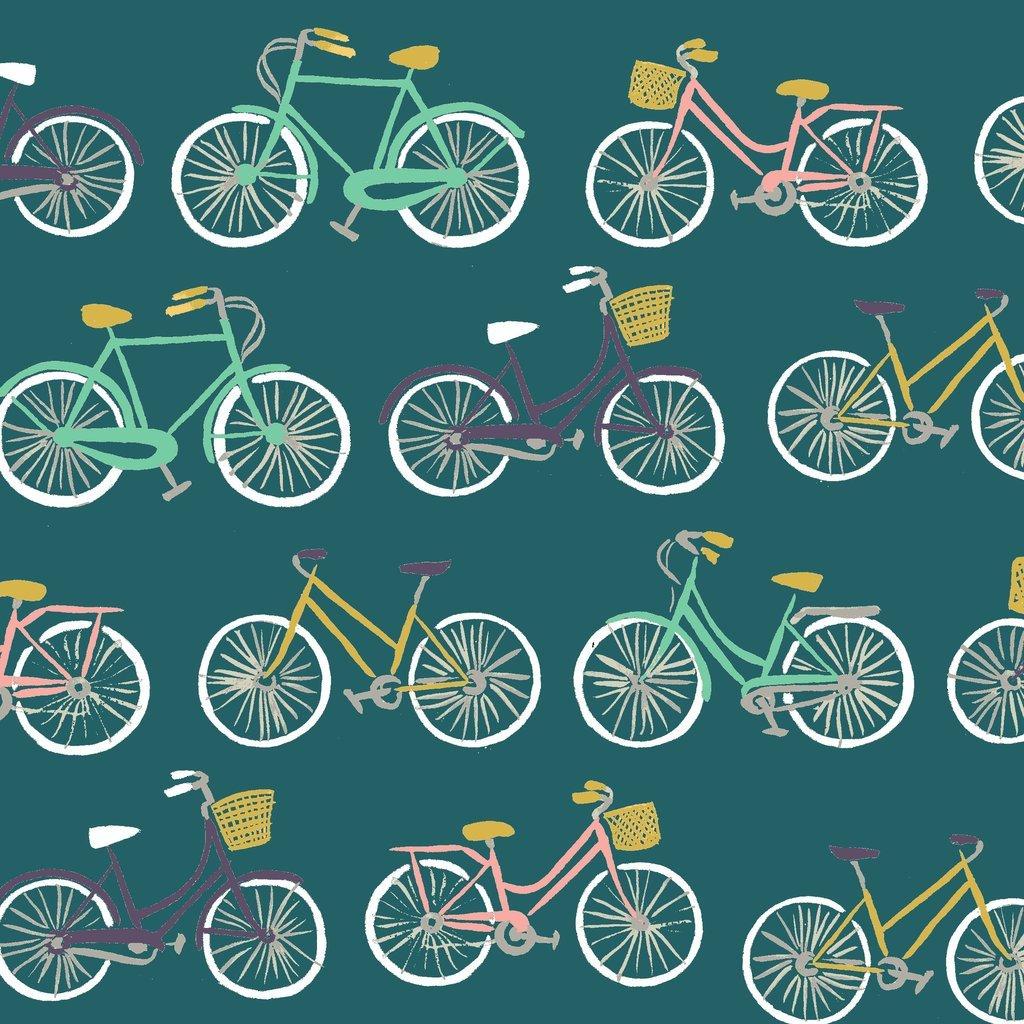 Bike Ride Poplin