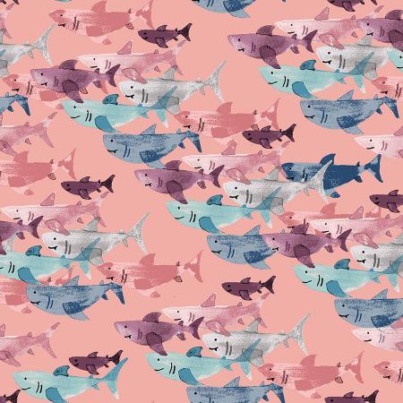 Kaikoura - Shark Frenzy - Shell
