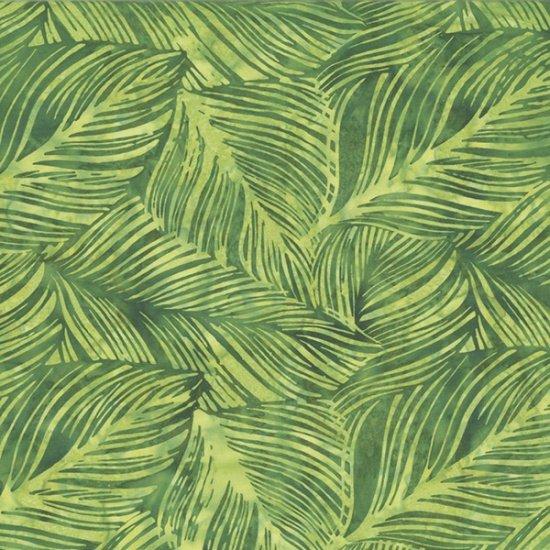 Large Leaf Q2138-334-Peter