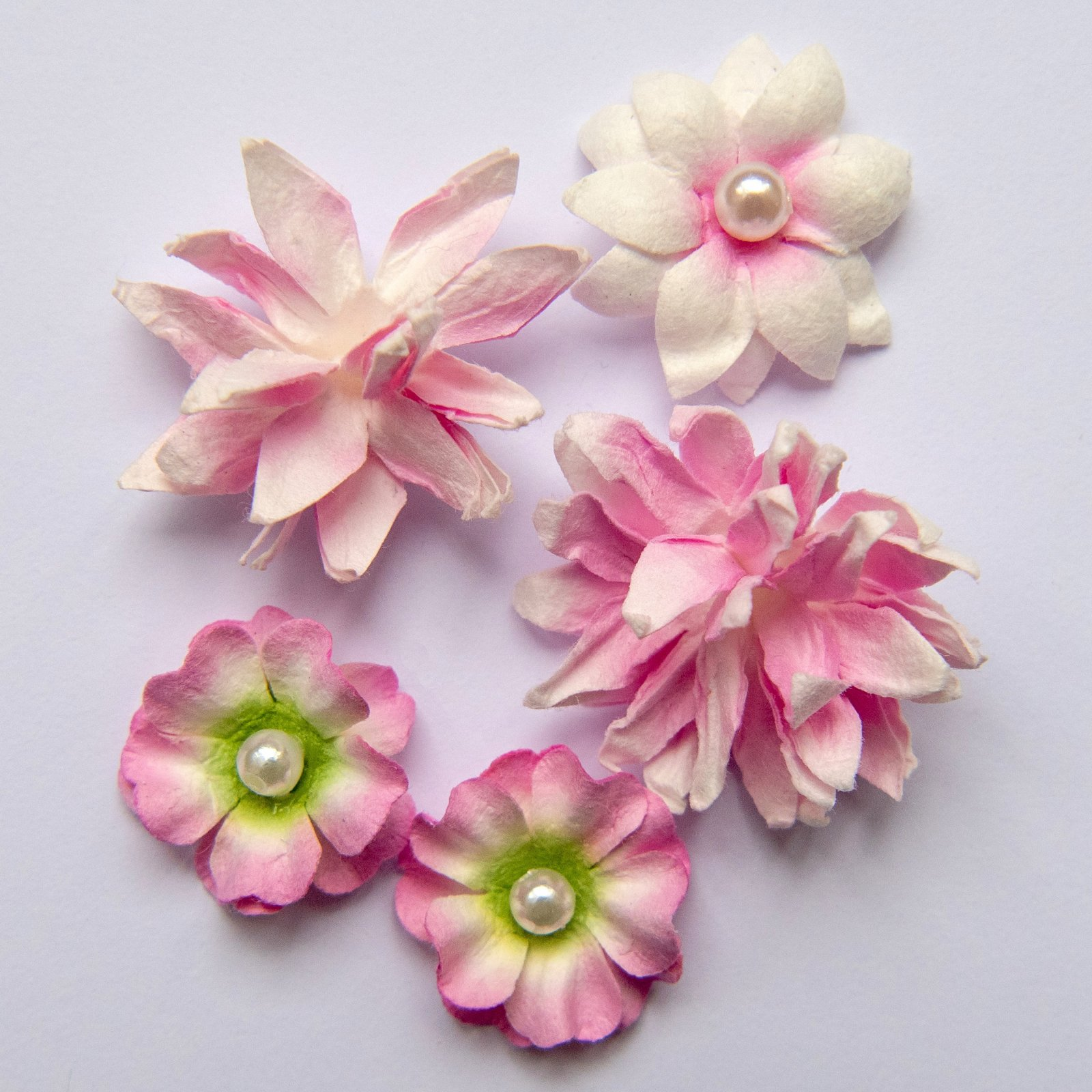 Flower mini series blush
