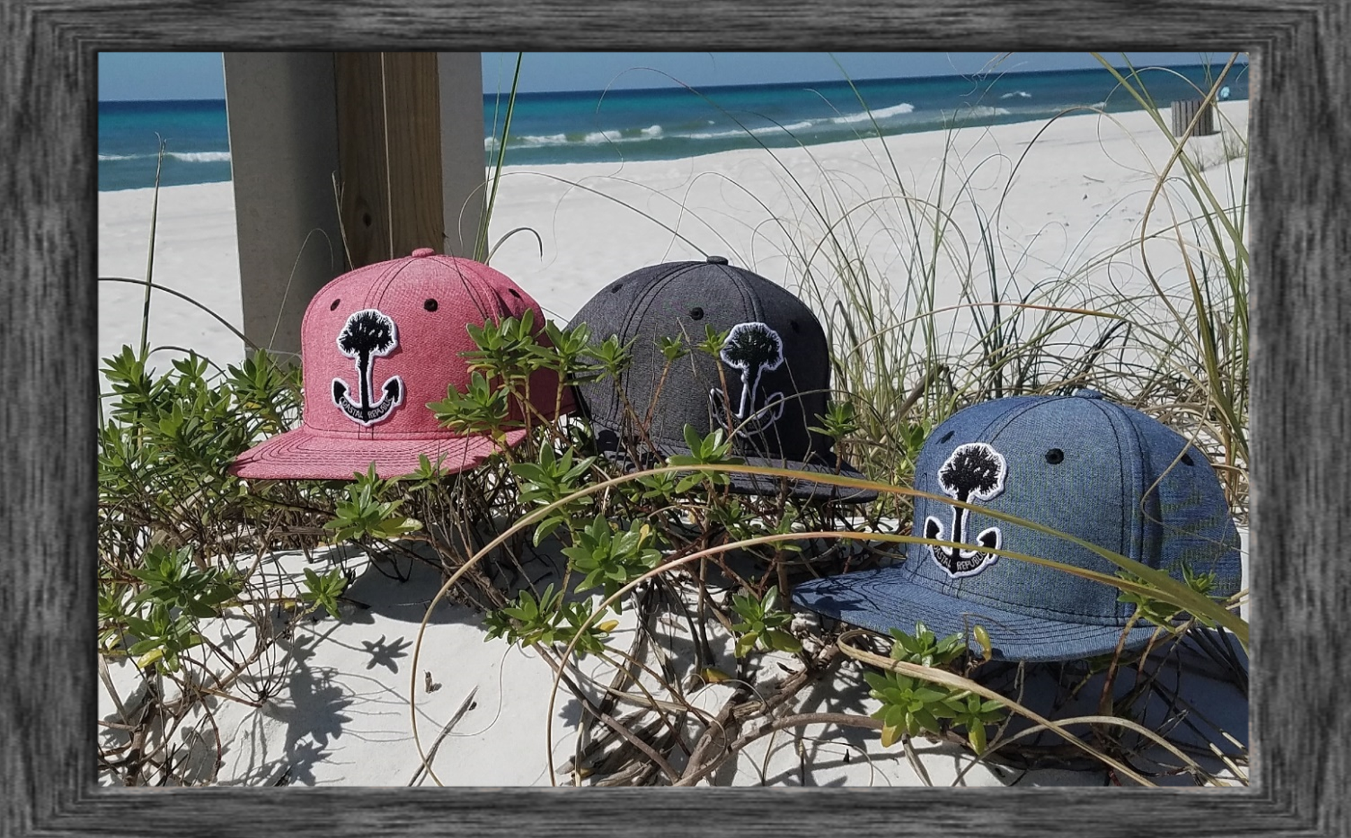 ANCHOR PALM PATCH  HAT