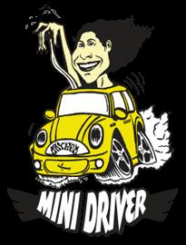 LOST MINI DRIVER