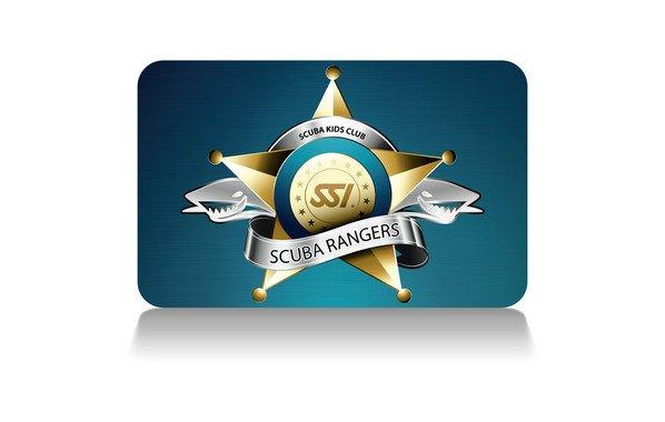 SCA-282U- Guage Element Set