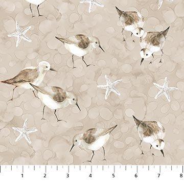 White Sands - Birds and Stars on Cream