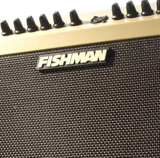 Fishman Loudbox Mini PRO-LBX-500 Acoustic Instrument Amplifier