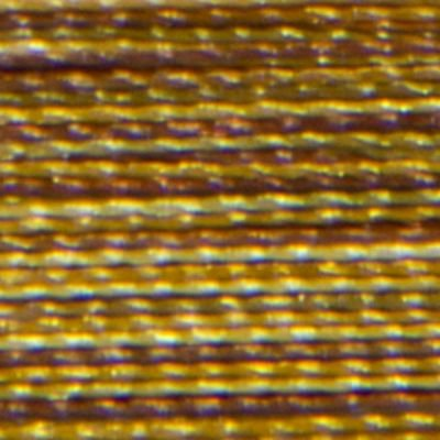 Isacord Variegated 1000m-Autumn 9975 *