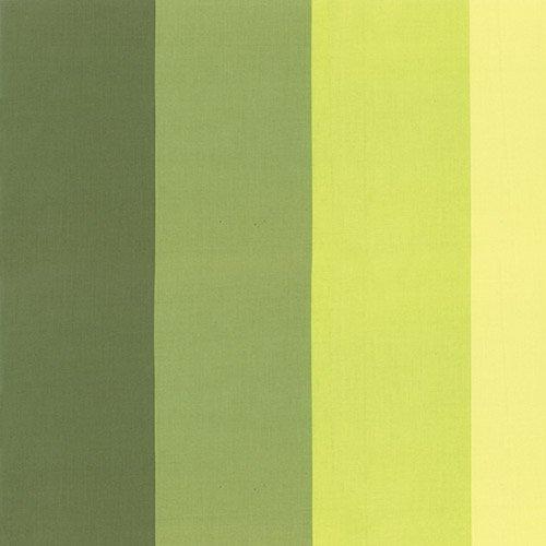 Color Me Happy 10829-15