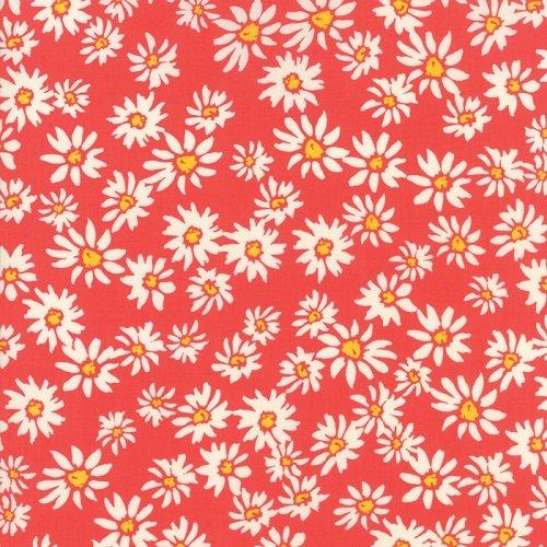 Painted Garden 11812-12