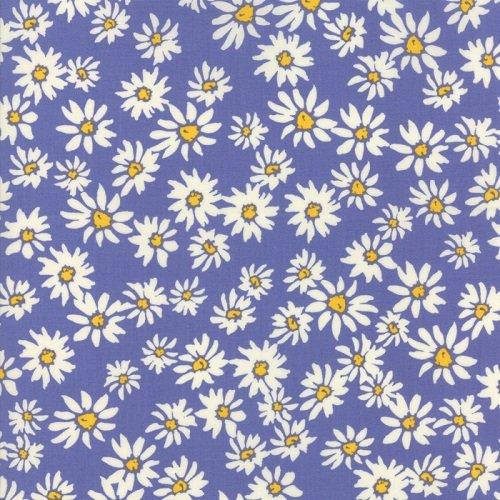 Painted Garden 11812-18