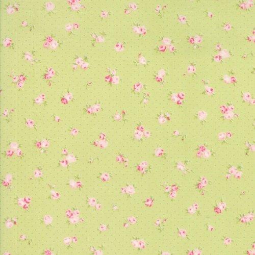 Fleurs 18632-13