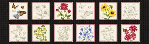Floral Etchings 23514-J