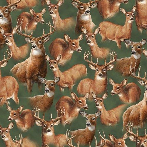 Deer Mountain 24792-G