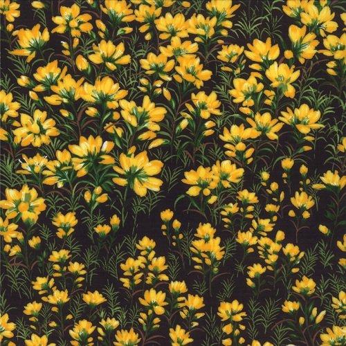 Wildflowers VI 32813-15
