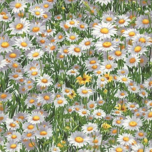 Wildflowers VI 32814-11