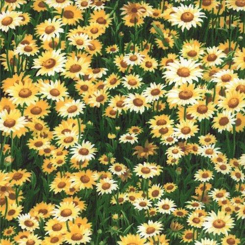 Wildflowers VI 32814-23