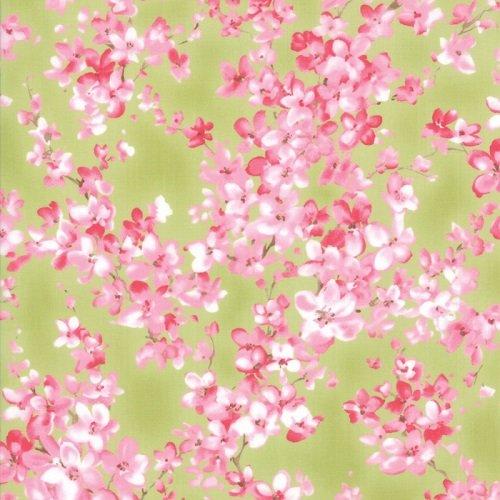 Sakura 33170-15