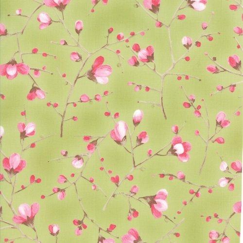 Sakura 33172-15